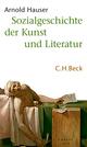 Sozialgeschichte der Kunst und Literatur
