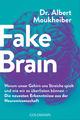 Fake Brain