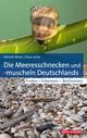 Die Meeresschnecken und -muscheln Deutschlands