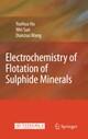 Electrochemistry of Flotation of Sulphide Minerals