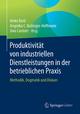 Produktivität von industriellen Dienstleistungen in der betrieblichen Praxis