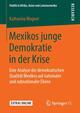 Mexikos junge Demokratie in der Krise