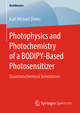 Photophysics and Photochemistry of a BODIPY-Based Photosensitizer