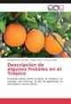 Descripción de algunos frutales en el Trópico