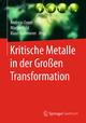 Kritische Metalle in der Großen Transformation