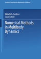 Numerical Methods in Multibody Dynamics