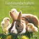 Tierfreundschaften - Familientimer 2019