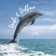 Wale und Delfine 2022