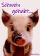 Schwein gehabt...