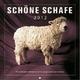 Schöne Schafe 2013
