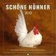 Schöne Hühner 2013