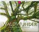 WaldWunder - Im Reich der grünen Giganten