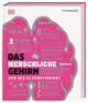 Das menschliche Gehirn und wie es funktioniert