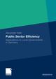 Public Sector Efficiency
