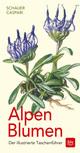 Alpen-Blumen