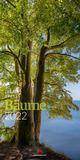 Bäume Kalender 2022