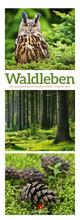 Waldleben - Ein Spaziergang durch heimische Wälder, Triplet-Kalender 2022