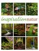 Inspiration Natur Kalender 2022