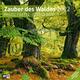 Zauber des Waldes 2022