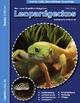 Leopardgeckos (Eublepharis Macularius)