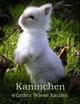 Kaninchen würden Wiese kaufen