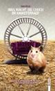 Was macht die Couch im Hamsterrad?