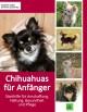 Chihuahuas für Anfänger