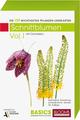 Pflanzen Lernkarten Die 100 wichtigsten Schnittblumen 1