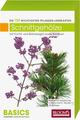 Pflanzen-Lernkarten: Die 100 wichtigsten Schnittgehölze