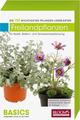 Pflanzen-Lernkarten: Die 100 wichtigsten Freilandpflanzen