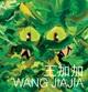 Wang Jiajia: Elegant, Circular, Timeless