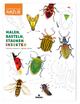 Malen, Basteln, Staunen - Insekten