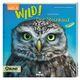 Expedition Natur: WILD! Der Steinkauz