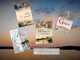 Die Bodensee Romane, 4 Bände: Der Medicus vom Bodensee - BodenSeele - Das Geheimnis des Medicus - X- Die geheime Quelle vom Bodensee