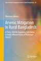 Arsenic Mitigation in Rural Bangladesh