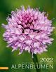 Alpenblumen 2022
