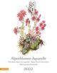Alpenblumen-Aquarelle 2022