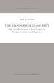 The Brain from 25,000 Feet