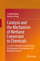 Catalysis and the Mechanism of Methane Conversion to Chemicals